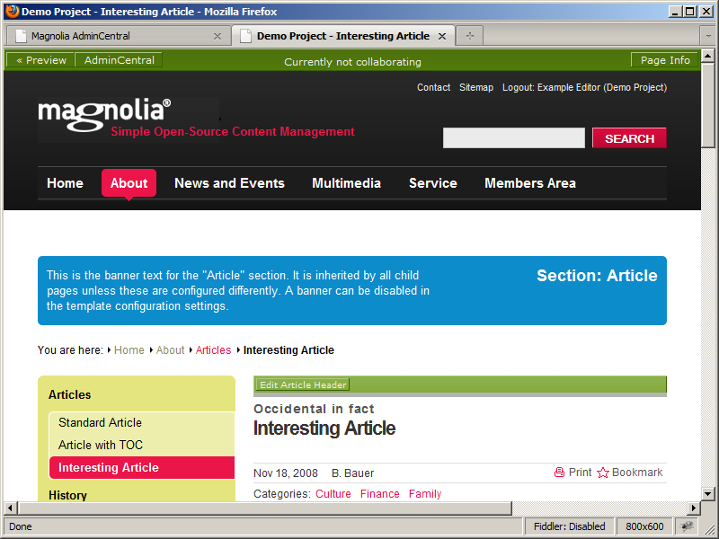 A Magnolia CMS page in preview mode