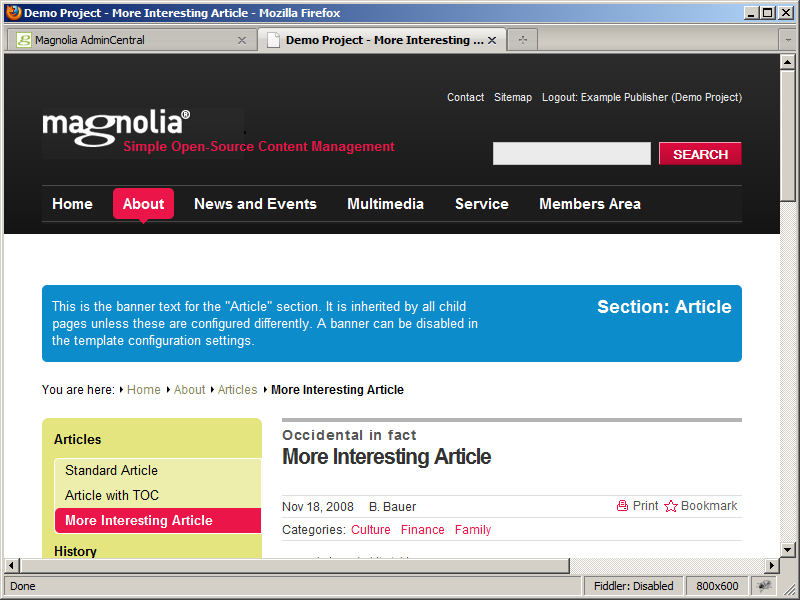 Preview of updated paragraph in Magnolia CMS